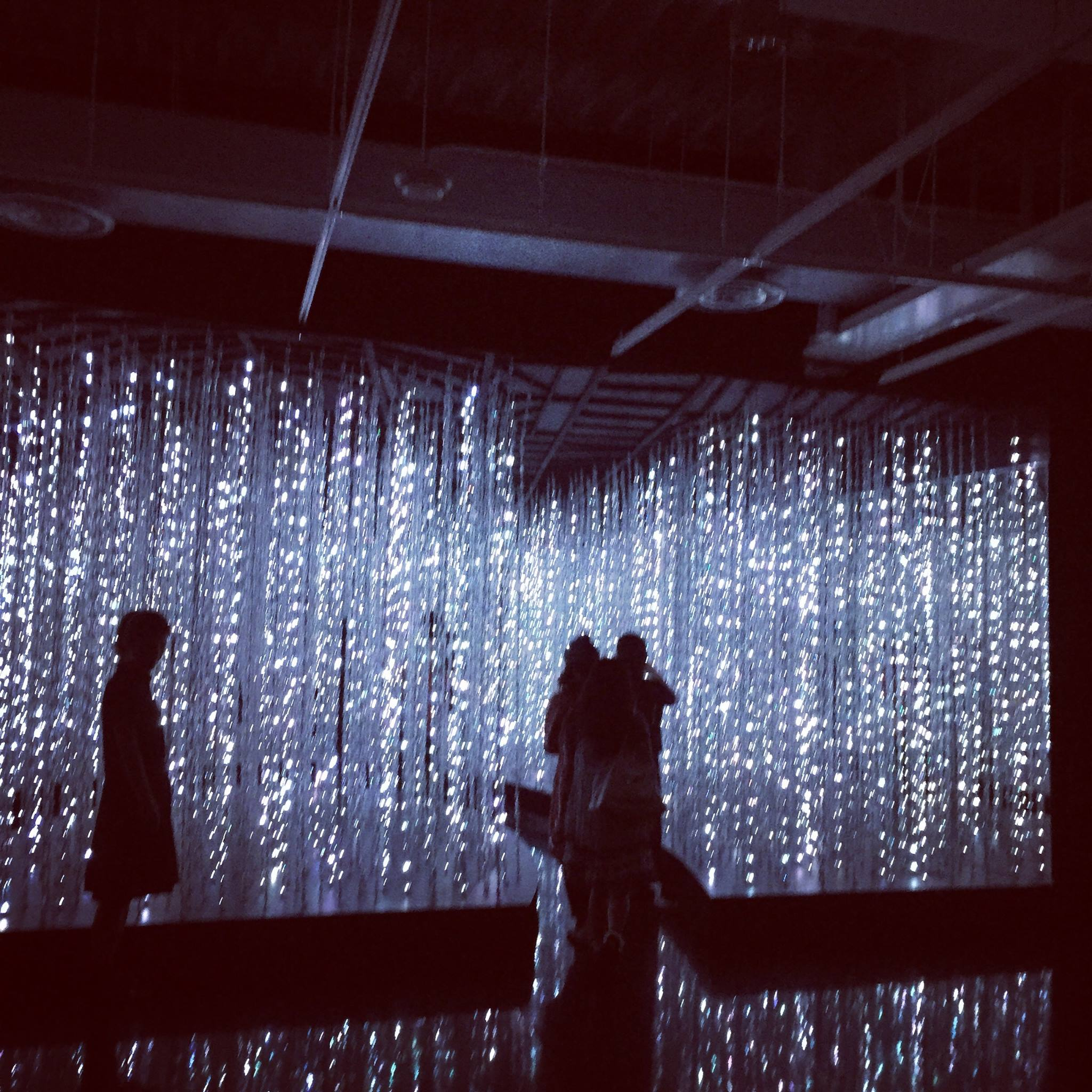 teamLab Exhibition1